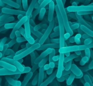 doenças causadas por água contaminada