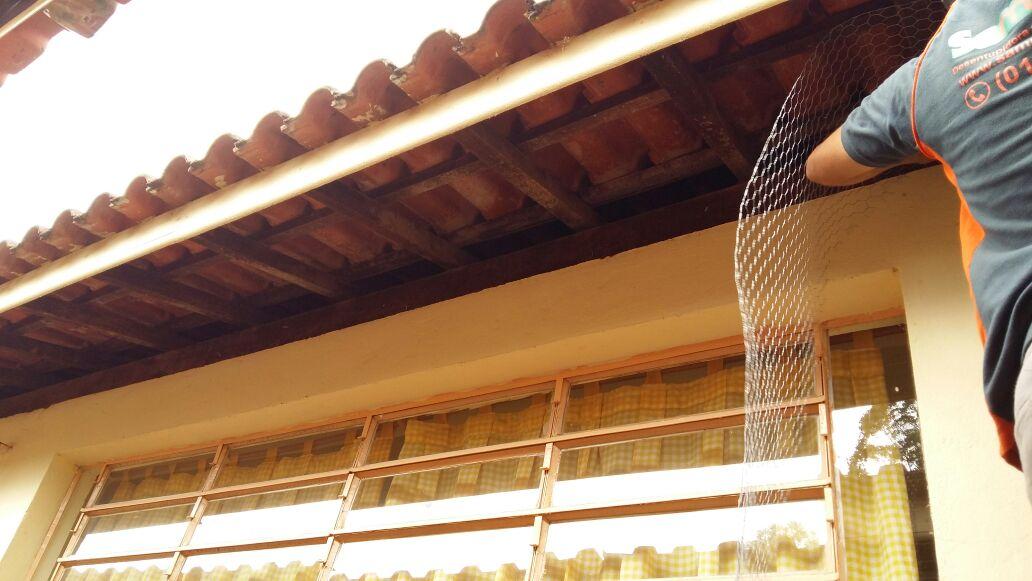 Controle de Pombos com tela